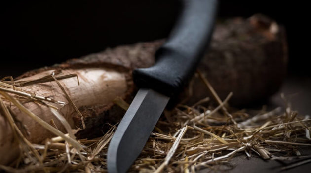 Best Budget Bushcraft Knives